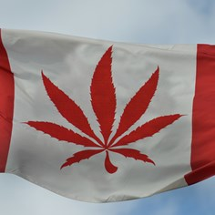 Special Briefing: Canada Legalizes Recreational Marijuana