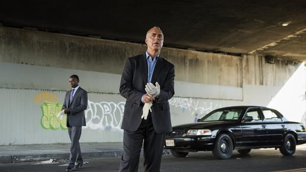 The Police Procedural Starring Real Detectives